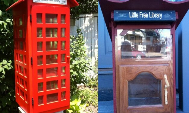 "Start a ""Little Library"" in your neighborhood"