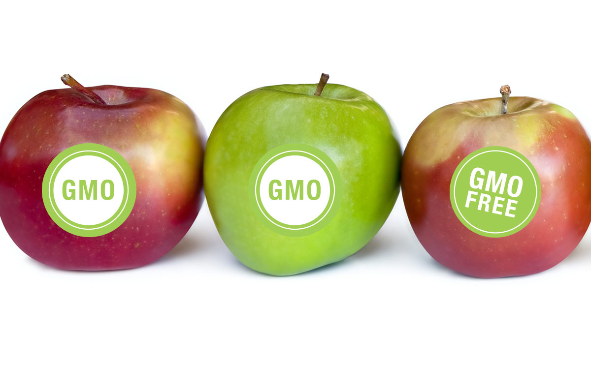 Proposition 105 requires that GMO's be labeled