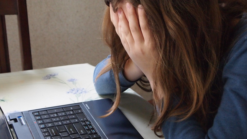 Cyberbullying and Online Hate