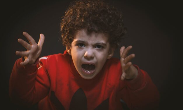 What To Do If You Have An Argumentative Child