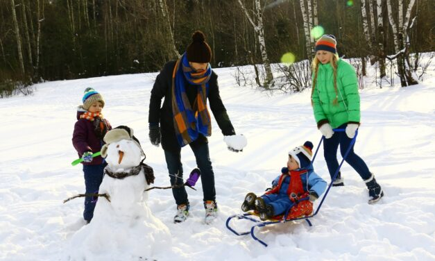 30 Things to make Snow Days fun!